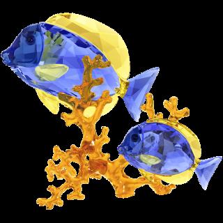 5223194 Figurka SWAROVSKI Doctorfish
