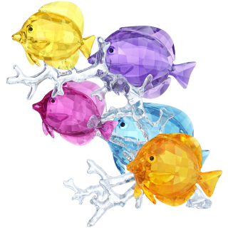 5223195 Soska SWAROVSKI Rainbow Fish Family