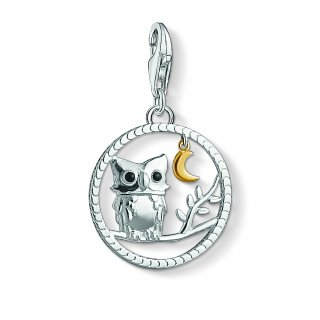1392 427 11 Privesok THOMAS SABO sova